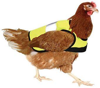 Warnweste für Hühner