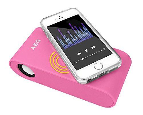 AEG Induktions Stereo-Lautsprecher